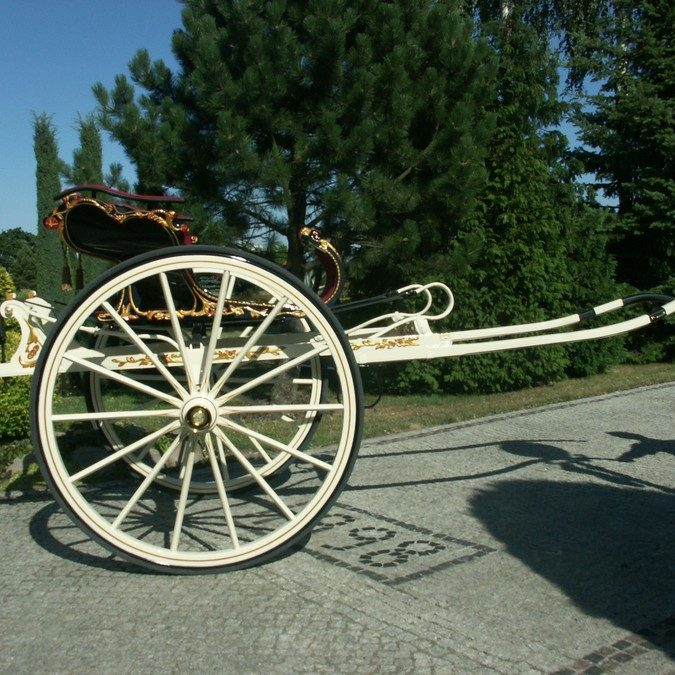 246. Frisen Carriage